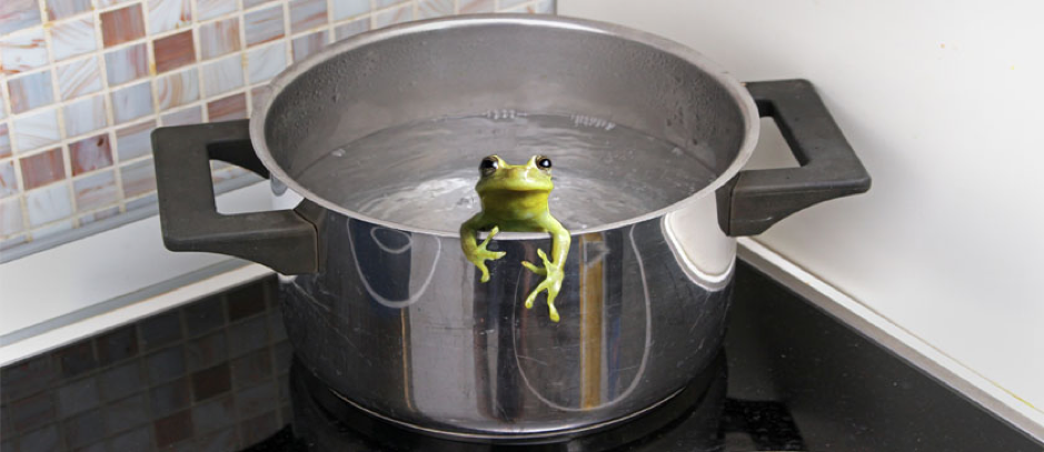 Boiling the frog of achieving culture in an incumbent world